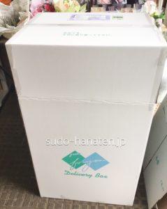 胡蝶蘭配送用のフラワーボックス