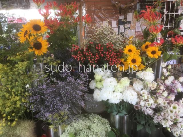 新小岩 須藤花店