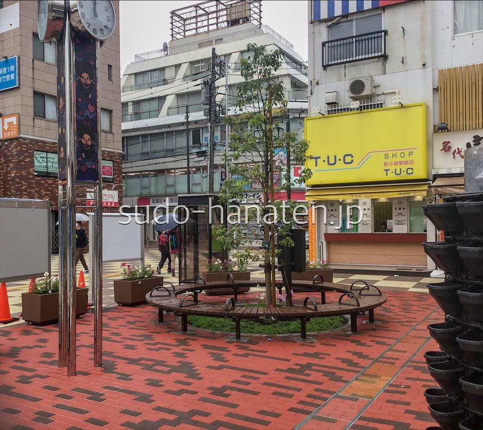 新小岩駅前花壇