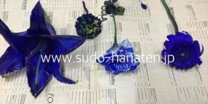 青い染料の実験